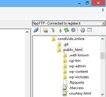 Notepad++: Elenco file di NppFTP